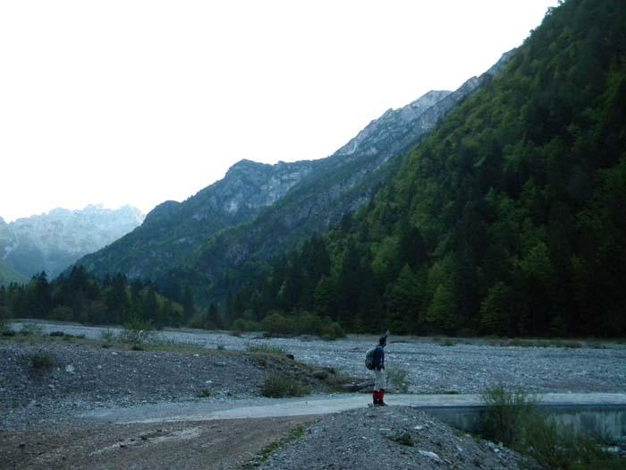 [Greppismo] Monte Pinzat 2061 m. - Pagina 2 DSCN2702