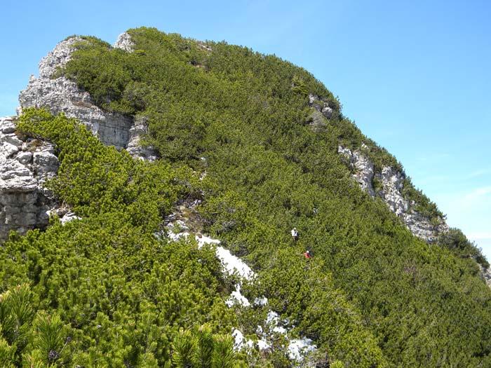 [Greppismo] Monte Pinzat 2061 m. - Pagina 2 DSCN2738