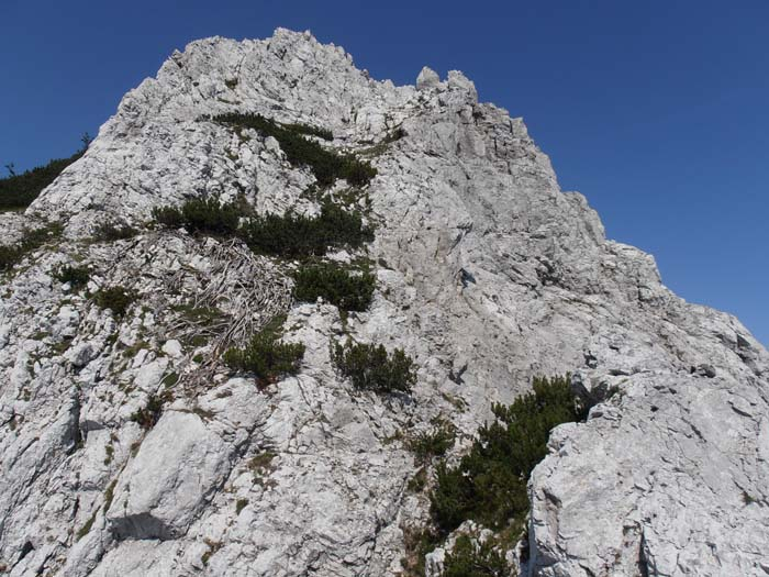 Traversata M. Castello M. Raut P8210076